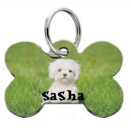 Placa identificativa Mascota